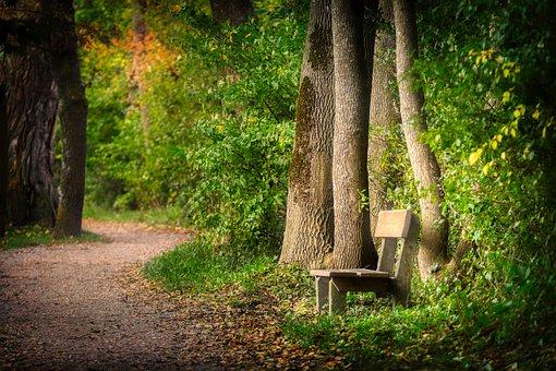 Understanding Trail Building Costs
